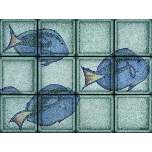 Composición de 12 bloques de vidrio Pesce Chirurgo